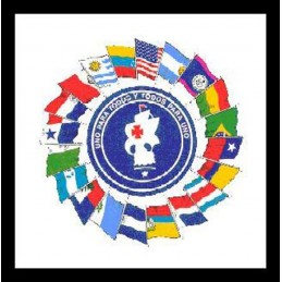 """PARCHES GENUINOS US ARMY """"SCHOOL OF THE AMERICAS"""""""